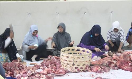 qurban-1-sekolah-islam-di-bali